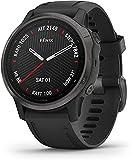 Garmin fenix 6S Sapphire, Premium Multisport GPS Watch, Smaller-Sized, Features Mapping, Music,...