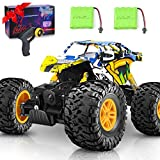 DOUBLE E Remote Control Car 4WD RC Car All Terrains Electric Toy Off Road Remote Control Monster...