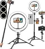 Selfie Ring Light, LED Light Ring with Stand, Circle Light for Makeup/Live Stream, Desktop Camera...