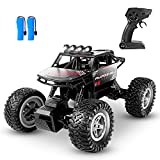 HENEROAR RC Cars,1:14 Scale All Terrain Remote Control Car, 4WD 2.4GHz Off Road Monster Vehicle RC...