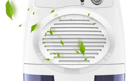 Top 10 Best Dehumidifier In July 2020