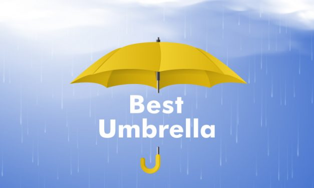 Best Umbrella in August 2020