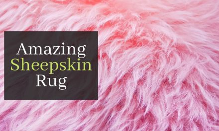The Amazing Sheepskin Rug